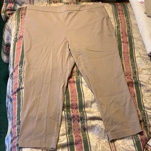 Women's Tan Briggs Dress Pants